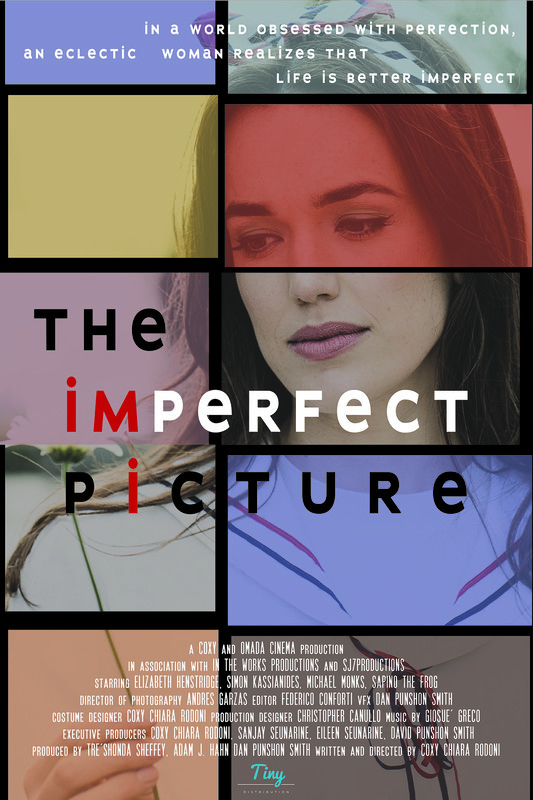 THE iMPERFECT PiCTURE